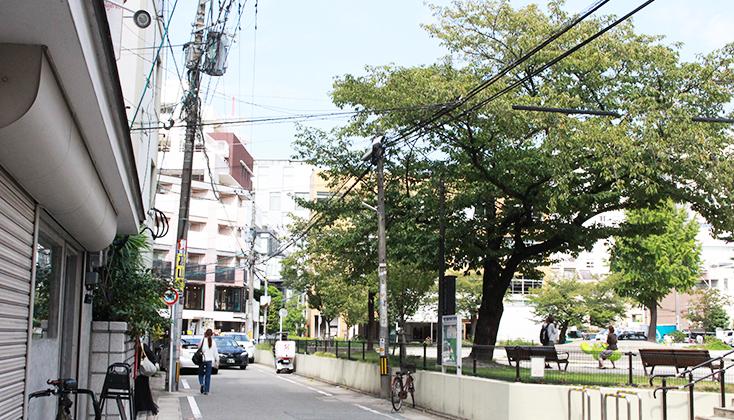 【写真】福岡市中央区 今泉公園周辺